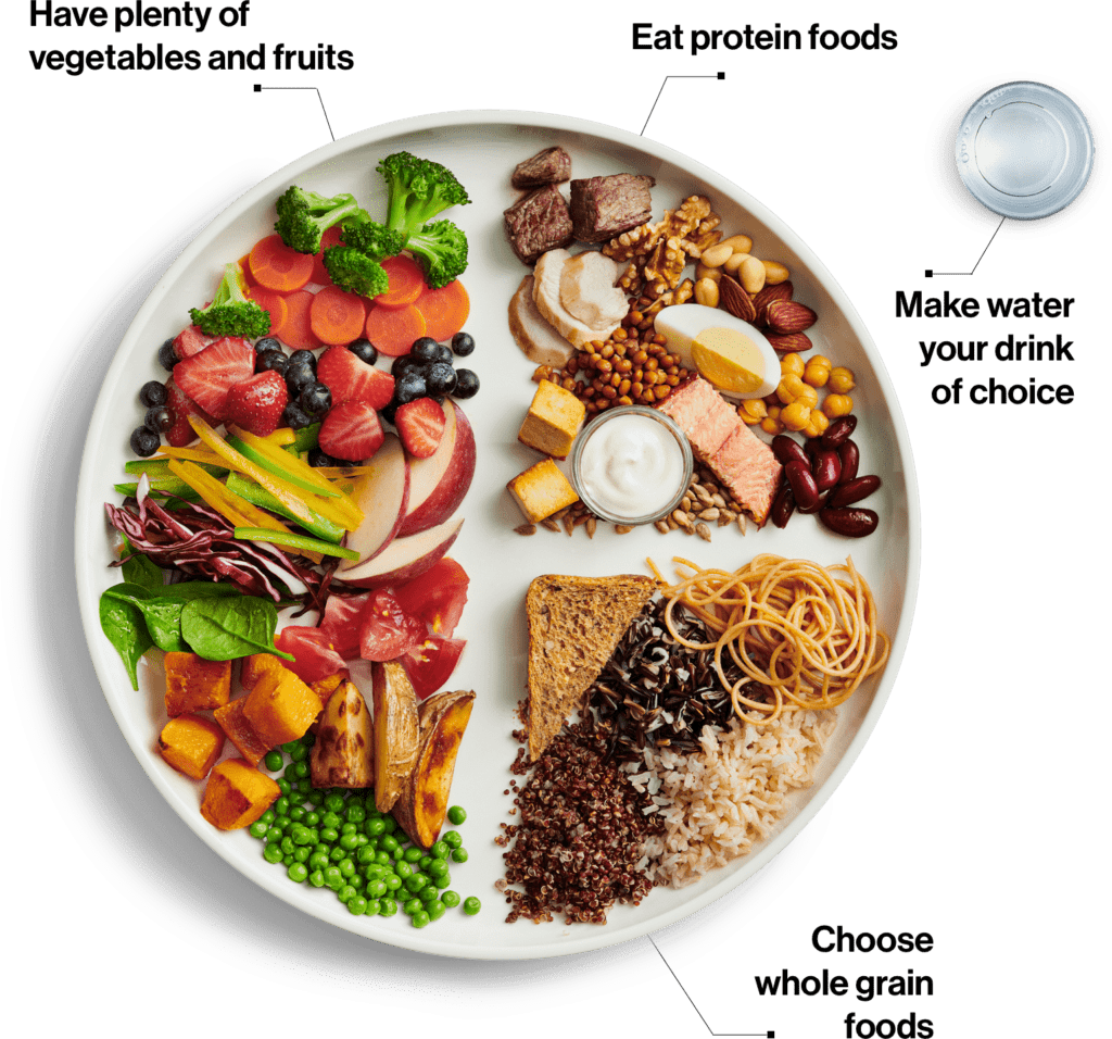 canada's new 2019 food guide plate graphic