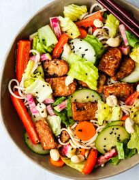 cold soba noodles salad with tempeh, lettuce, cucumbers, carrots, red peppers, and radishes in a brown bowl