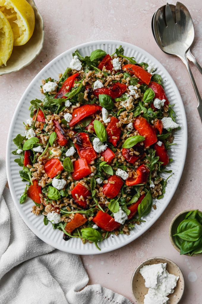 Overhead photo of a roasted red pepper salad with farro, arugula, goat cheese, and basil on a white serving plate.